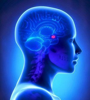 Pituitară - Cushing exces de hormon ACTH