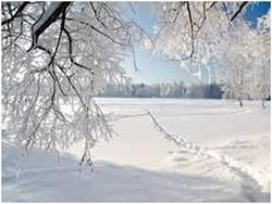 iarnă