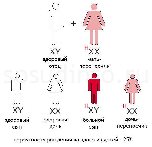Hemofilija: Zdrava otac, majka - transporter gena