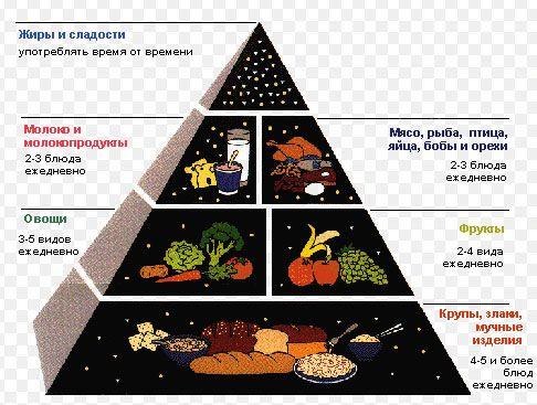 Strava a správné výživy s cholecystitidou