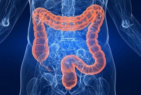 Zdravé a choré črevo