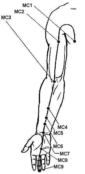 Perikard Meridian (ms)