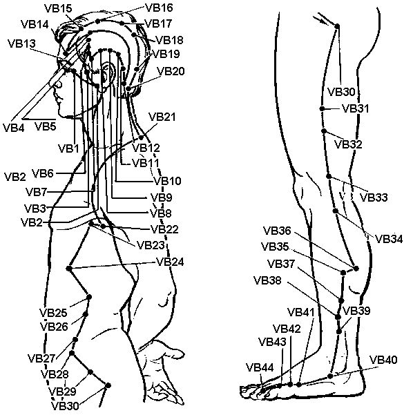 Žlučníku meridián (vb)