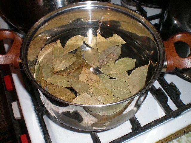 Fierberea leafs