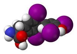 To, čo robí vysoká hormón stimulujúci štítnu žľazu (TSH)