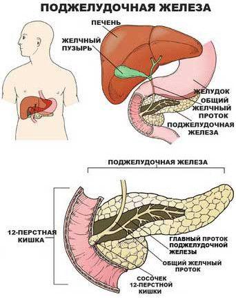 Kritéria pro naši slinivky nemoc