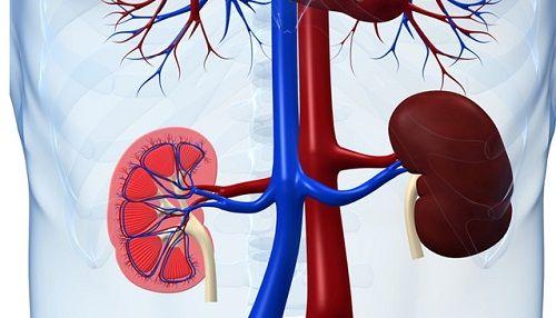 Mezi hlavní příznaky onemocnění ledvin