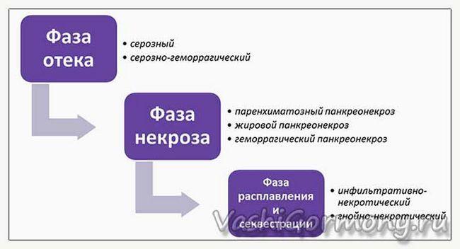 inflamația pancreasului - faza (diagrama)