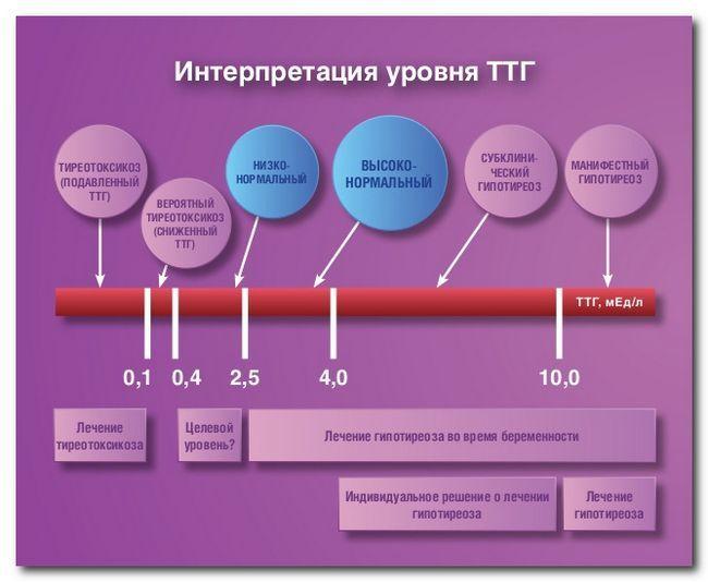 TSH a crescut ceea ce înseamnă pentru femei