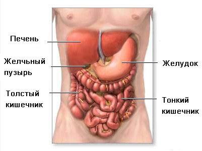 Indigestie în medicina tibetană