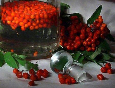 Rowan tinktura - Unikátní recepty domácí nápoj
