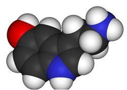TSH hormon